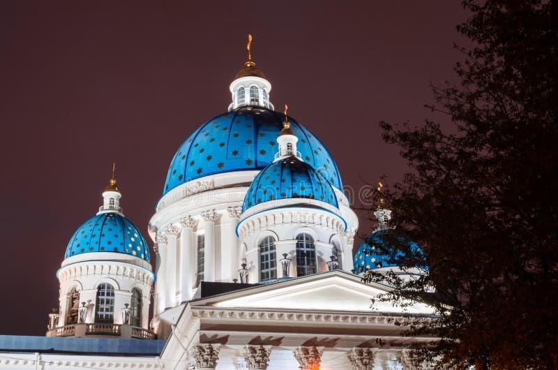Θόλοι άποψης νύχτας με τα αστέρια του καθεδρικού ναού Troitsky στην Άγιος-Πετρούπολη στοκ εικόνα με δικαίωμα ελεύθερης χρήσης