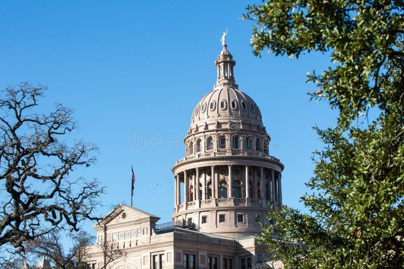 Θόλος κρατικού Capitol του Τέξας με τα δέντρα στοκ εικόνα