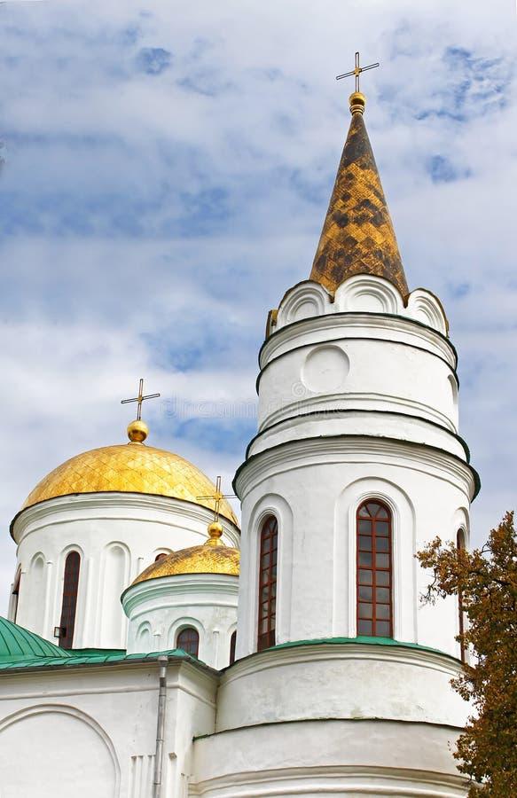 Θόλοι του καθεδρικού ναού μεταμόρφωσης, Ουκρανία στοκ εικόνες