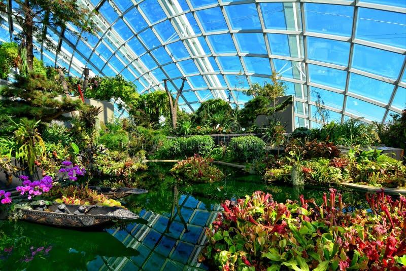 Θόλος λουλουδιών, κήποι από τον κόλπο, Σιγκαπούρη στοκ εικόνες