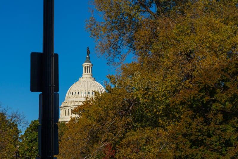 Θόλος του Washington DC Capitol που χτίζει το εξωτερικό νέο κοβάλτιο φύλλων δέντρων στοκ φωτογραφίες