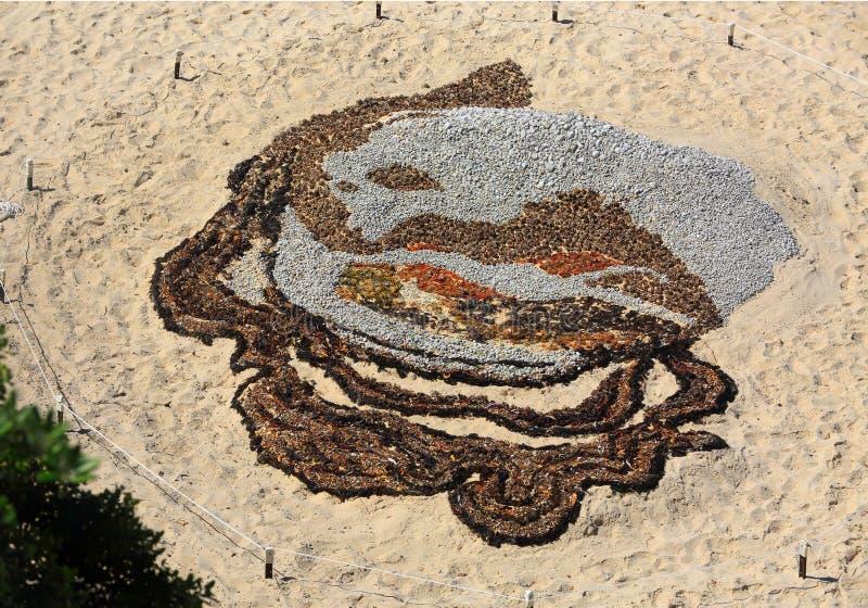 Θύελλα γάμμα γάμμα στην παραλία Tamarama στοκ φωτογραφίες