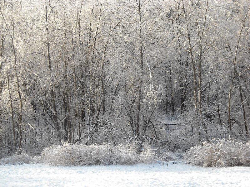 Θύελλα πάγου στοκ εικόνες