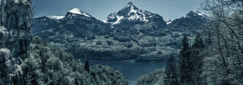 Θλιβερό πανόραμα με τις ελβετικές αιχμές Άλπεων στοκ φωτογραφία με δικαίωμα ελεύθερης χρήσης