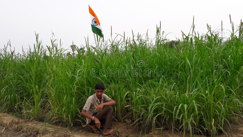 διαθέσιμο διάνυσμα ύφους της Ινδίας γυαλιού σημαιών στοκ φωτογραφία