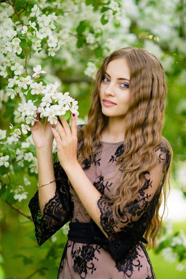 διανύσματα οπωρώνων απεικόνισης κοριτσιών μήλων στοκ φωτογραφία με δικαίωμα ελεύθερης χρήσης