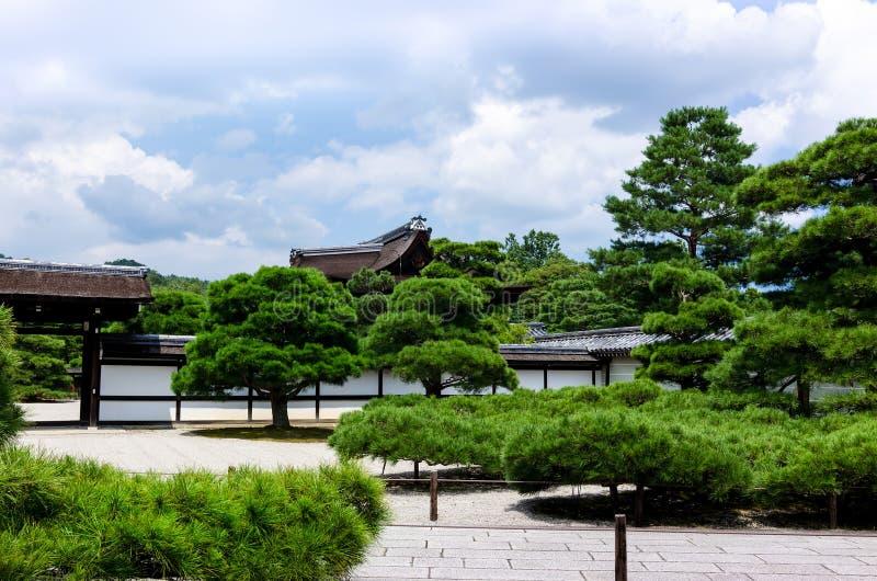 Ιαπωνικά δέντρα πεύκων κήπων, Κιότο Ιαπωνία στοκ φωτογραφίες με δικαίωμα ελεύθερης χρήσης