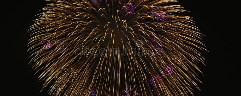 Ιαπωνικά θαυμάσια πυροτεχνήματα άποψης στοκ εικόνες