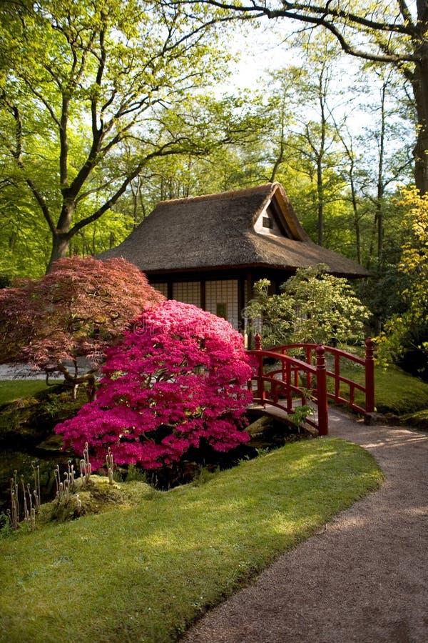ιαπωνική άνοιξη πάρκων στοκ φωτογραφία με δικαίωμα ελεύθερης χρήσης