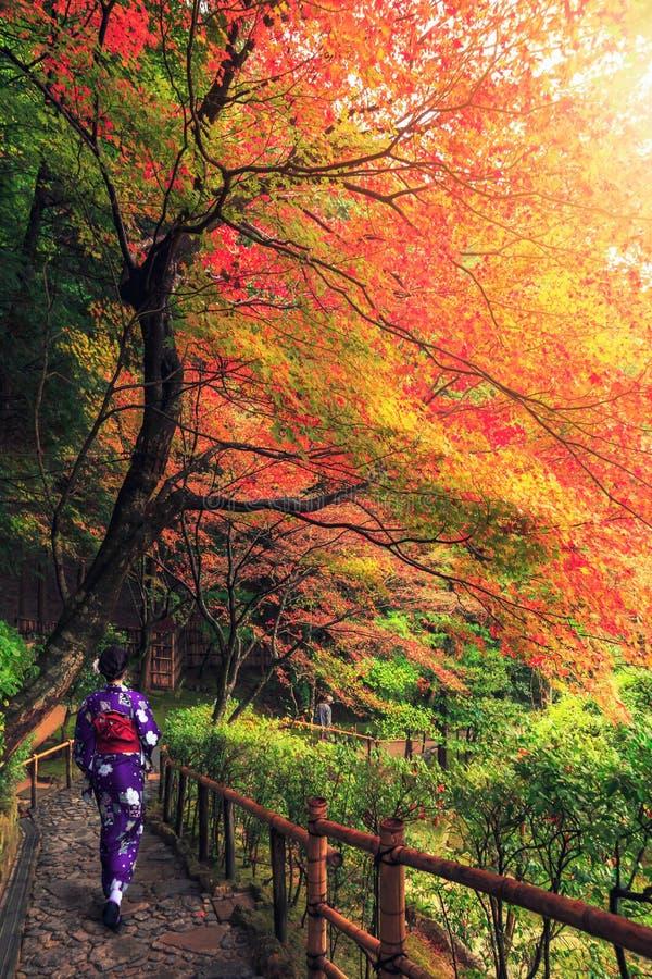 Ιαπωνική γυναίκα που περπατά με το παραδοσιακό κιμονό το φθινόπωρο στοκ φωτογραφία με δικαίωμα ελεύθερης χρήσης