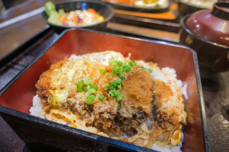 Ιαπωνική κουζίνα Katsudon στοκ εικόνα