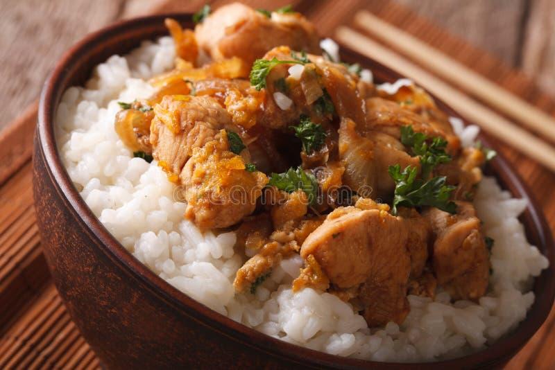 Ιαπωνική κουζίνα: oyakodon με το ρύζι στενό σε έναν επάνω κύπελλων ορίζοντας στοκ εικόνες με δικαίωμα ελεύθερης χρήσης