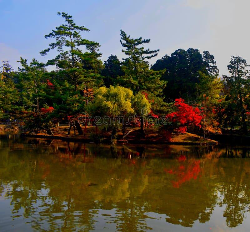 Ιαπωνικός κήπος του Νάρα κατά τη διάρκεια της εποχής πτώσης στοκ φωτογραφίες