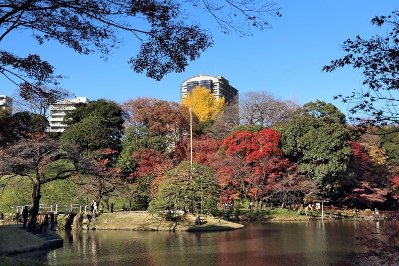 Ιαπωνικός κήπος του Τόκιο στοκ φωτογραφία με δικαίωμα ελεύθερης χρήσης