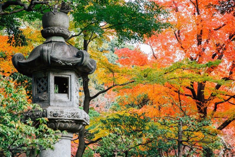 Ιαπωνικό παραδοσιακό φανάρι πετρών με το σφένδαμνο φθινοπώρου στοκ φωτογραφίες