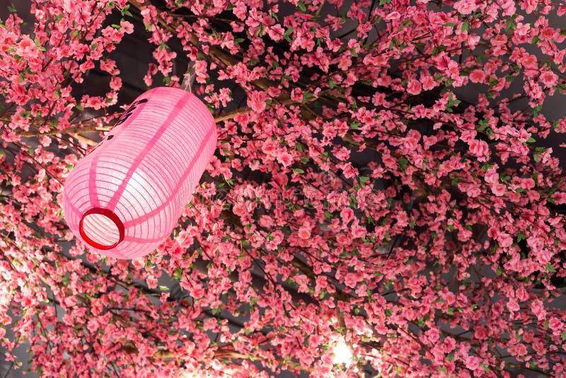 Ιαπωνικό ρόδινο χρώμα φαναριών με το πλαστικό sakura στοκ εικόνα με δικαίωμα ελεύθερης χρήσης