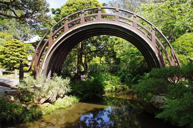 ιαπωνικό τσάι κήπων στοκ φωτογραφία με δικαίωμα ελεύθερης χρήσης