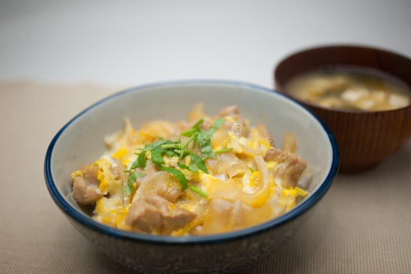 ιαπωνικό oyakodon κουζίνας στοκ εικόνα