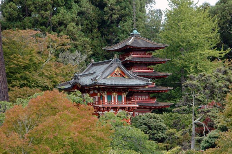 ιαπωνικό SAN Francisco τσάι κήπων στοκ φωτογραφία με δικαίωμα ελεύθερης χρήσης