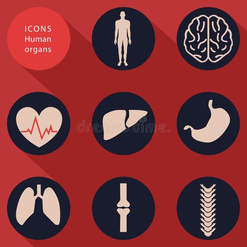 Ιατρικά εικονίδια, ανθρώπινα σώματα, επίπεδο σχέδιο, διάνυσμα απεικόνιση αποθεμάτων