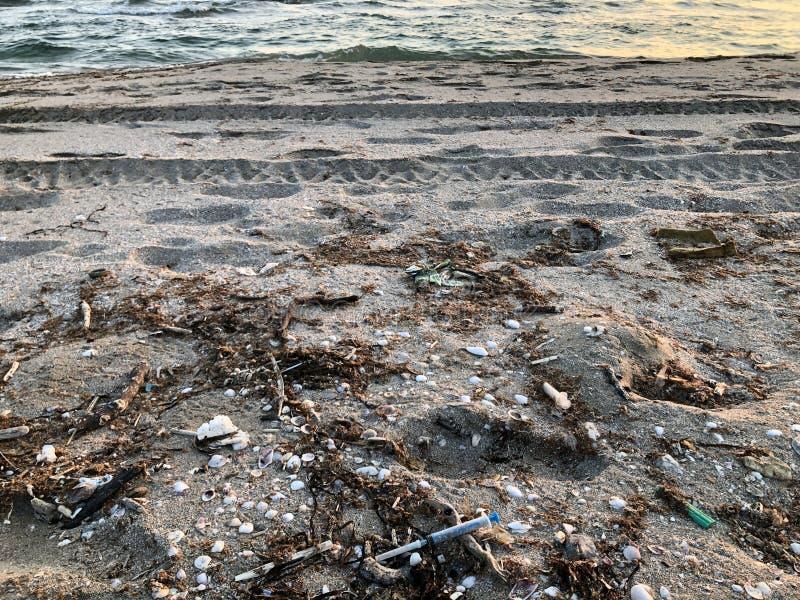 Ιατρικές σύριγγες μεταξύ των rapan κοχυλιών στην άμμο στην παραλία θάλασσας μετά από τη θύελλα στοκ εικόνα