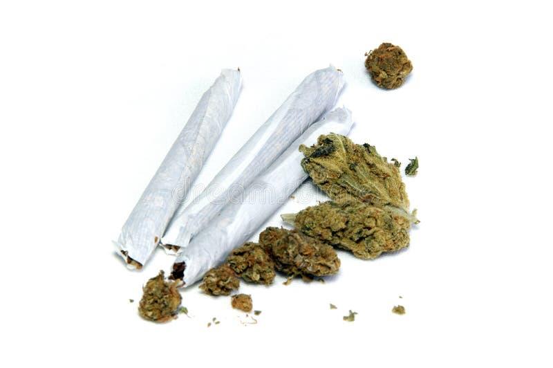 Ιατρική μαριχουάνα στο λευκό στοκ εικόνες