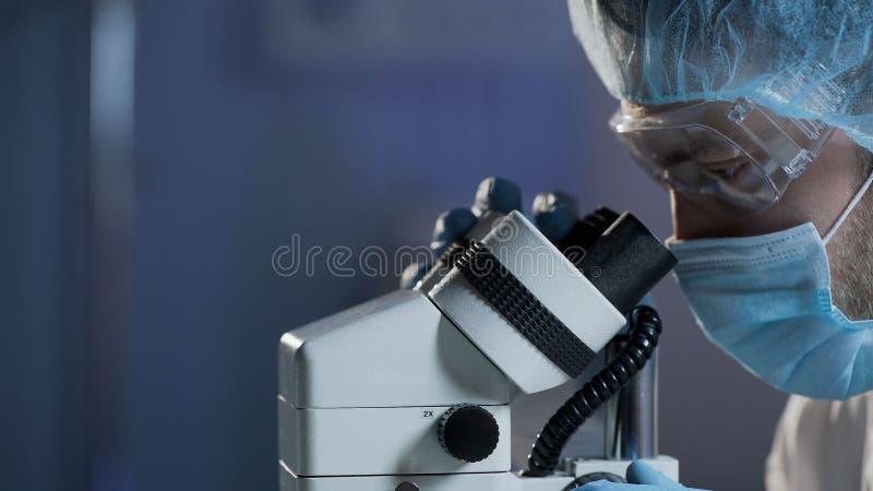 Ιατρικός επιστήμονας που πραγματοποιεί την έρευνα του δείγματος αίματος για τις αιματολογικές ασθένειες στοκ εικόνα με δικαίωμα ελεύθερης χρήσης