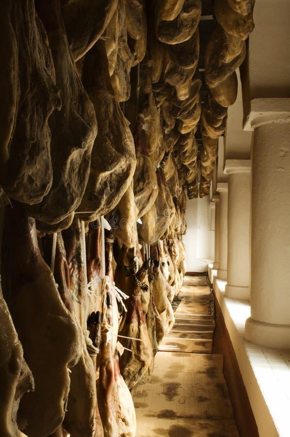 Ιβηρικά θεραπευμένα ζαμπόν που αποθηκεύονται σε ένα δωμάτιο αποξήρανσης στοκ εικόνα
