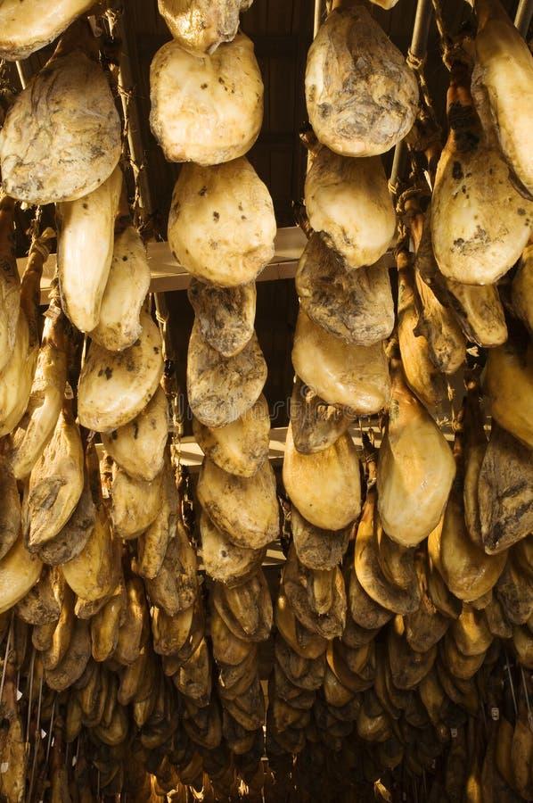Ιβηρικά θεραπευμένα ζαμπόν που αποθηκεύονται σε ένα δωμάτιο αποξήρανσης στοκ εικόνες