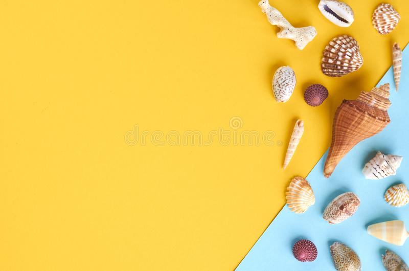 Ιδέα σύνθεσης θερινών διακοπών, θαλασσινά κοχύλια σχετικά με το μπλε και κίτρινο υπόβαθρο στοκ φωτογραφία με δικαίωμα ελεύθερης χρήσης