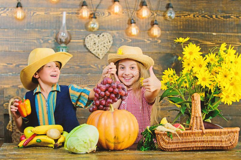 Ιδέα φεστιβάλ πτώσης δημοτικών σχολείων Φεστιβάλ συγκομιδών φθινοπώρου Τα παιδιά παίζουν την κολοκύθα λαχανικών Ένδυση αγοριών κο στοκ εικόνα με δικαίωμα ελεύθερης χρήσης