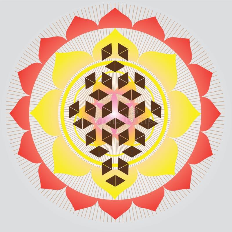 Ιερό γεωμετρία-λουλούδι του σπόρου ζωής απεικόνιση αποθεμάτων