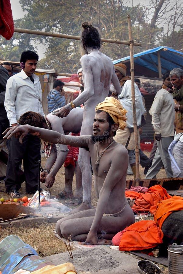 ιερό sadhus ατόμων της Ινδίας στοκ εικόνες με δικαίωμα ελεύθερης χρήσης