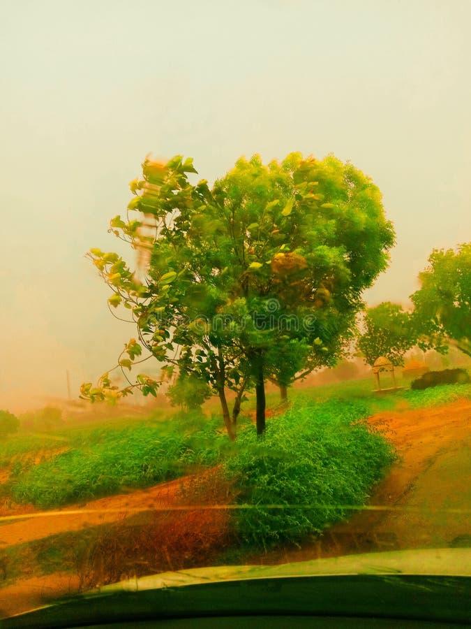 Ινδικές ομορφιά φύσης και ενέργεια της ομορφιάς στοκ φωτογραφία με δικαίωμα ελεύθερης χρήσης