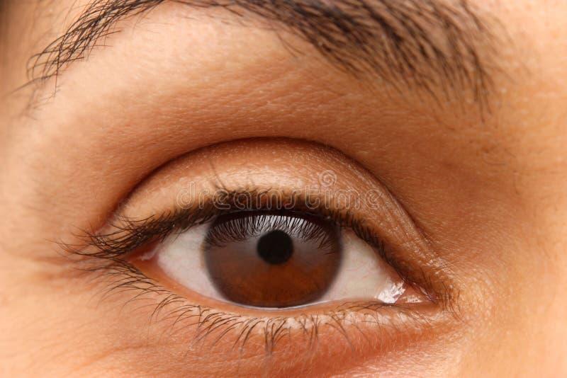 ινδική γυναίκα ματιών κινημ& στοκ εικόνα με δικαίωμα ελεύθερης χρήσης