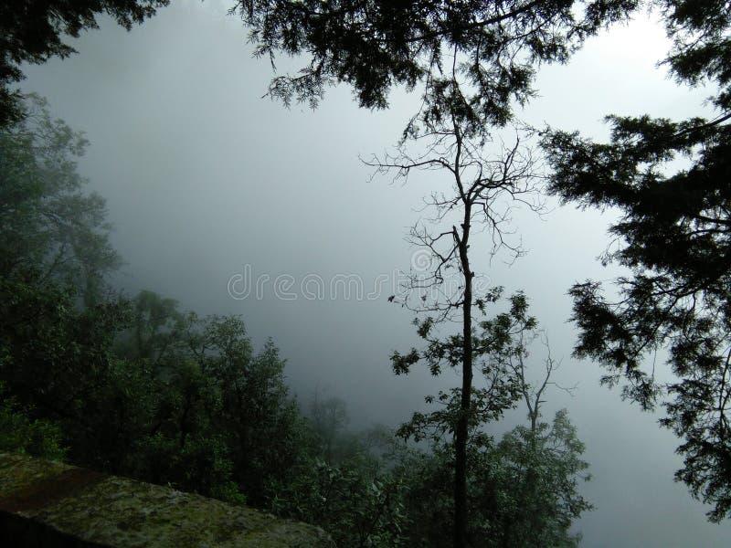Ινδική ομορφιά φύσης στοκ εικόνα με δικαίωμα ελεύθερης χρήσης