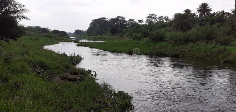 Ινδικοί μικροί ποταμός και δάσος στοκ φωτογραφία με δικαίωμα ελεύθερης χρήσης