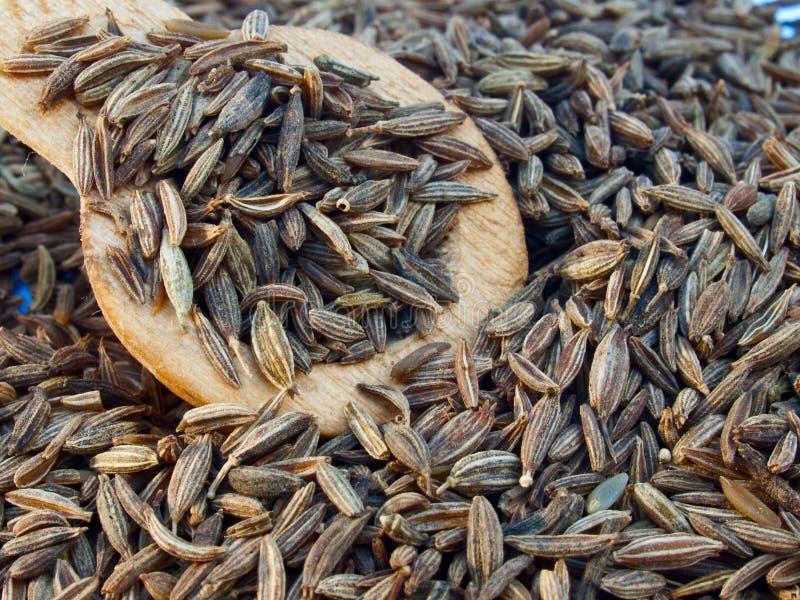 ινδικοί σπόροι κύμινου στοκ φωτογραφία με δικαίωμα ελεύθερης χρήσης