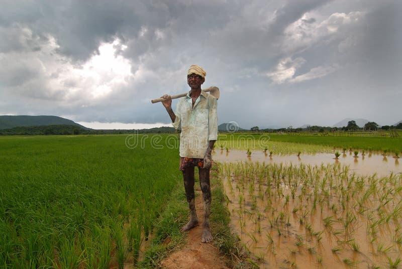 Ινδικός αγρότης στοκ εικόνες