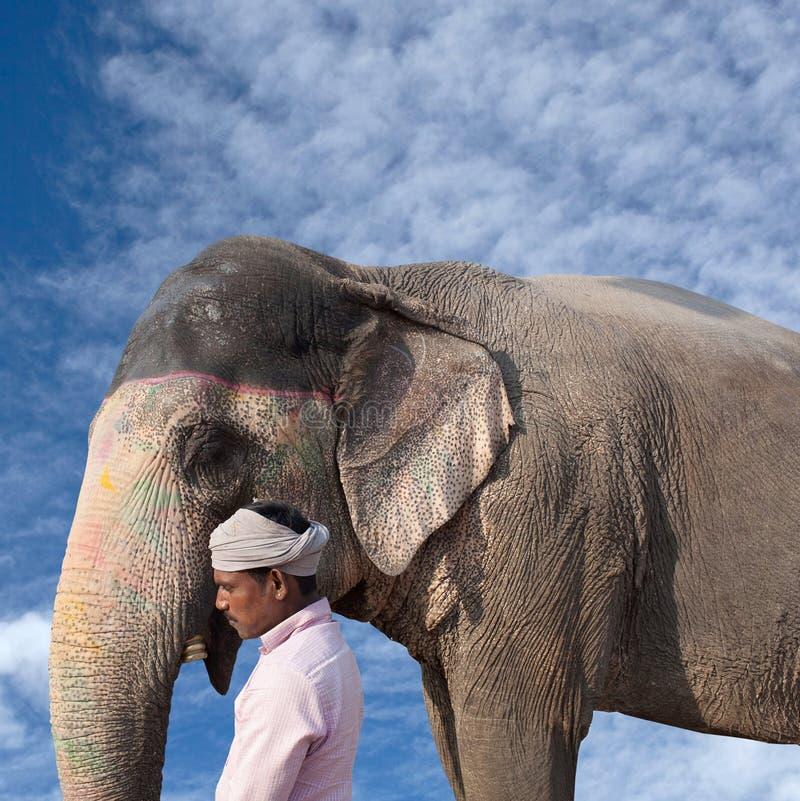Ινδικό άτομο με τον ελέφαντα στοκ φωτογραφία