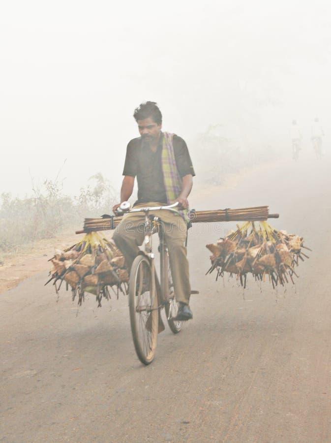 Ινδικό αγροτικό αρουραίος-catcher στοκ φωτογραφίες