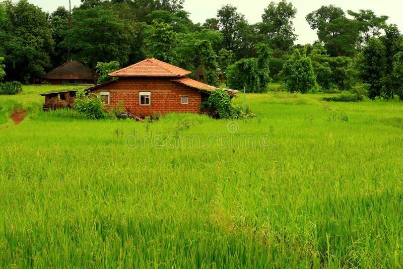 ινδικό ακμάζον χωριό στοκ φωτογραφία με δικαίωμα ελεύθερης χρήσης