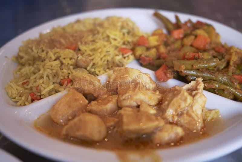 Ινδικό πιάτο κοτόπουλου στοκ εικόνα με δικαίωμα ελεύθερης χρήσης