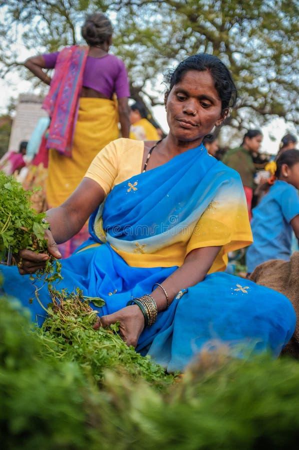 ινδικός θηλυκός προμηθευτής στοκ εικόνες