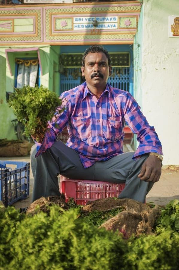 Ινδικός πωλητής στοκ φωτογραφία με δικαίωμα ελεύθερης χρήσης