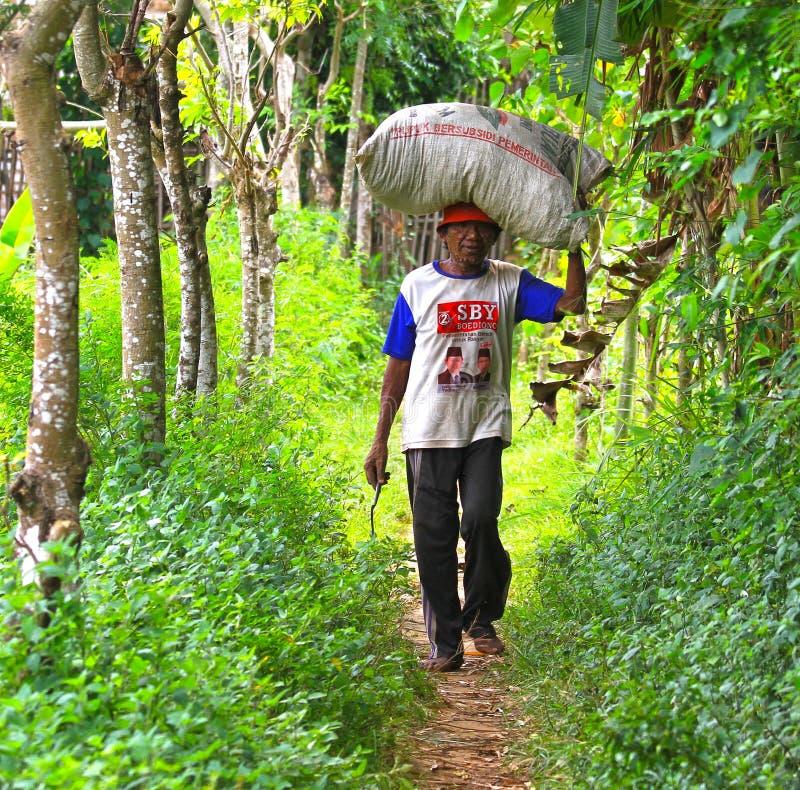 Ινδονησιακός φέρνοντας σάκος ατόμων της χλόης στοκ φωτογραφία με δικαίωμα ελεύθερης χρήσης