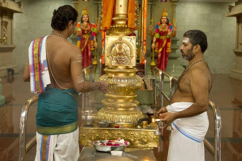 Ινδός ιερέας στοκ εικόνες