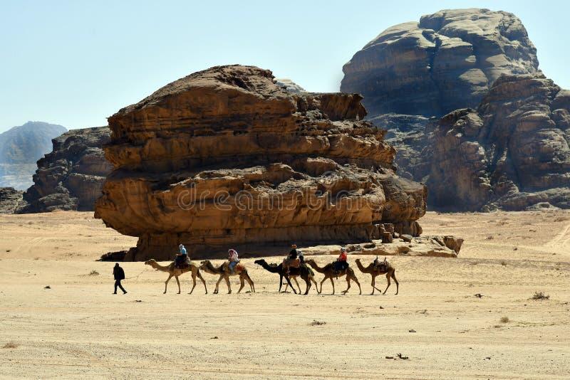 Ιορδανία, γύρος καμηλών στο ρούμι Wadi στοκ εικόνα με δικαίωμα ελεύθερης χρήσης