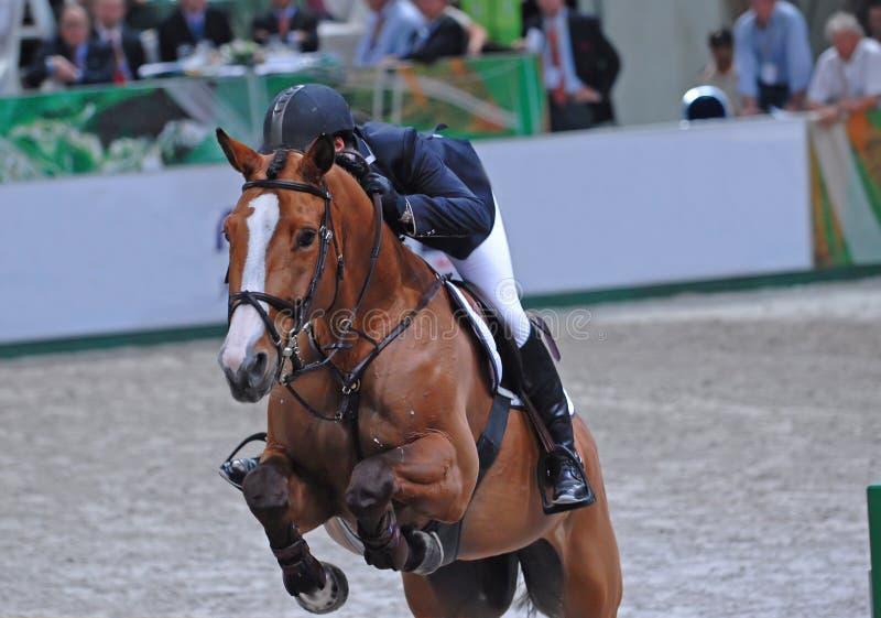 ιππικός στοκ εικόνα