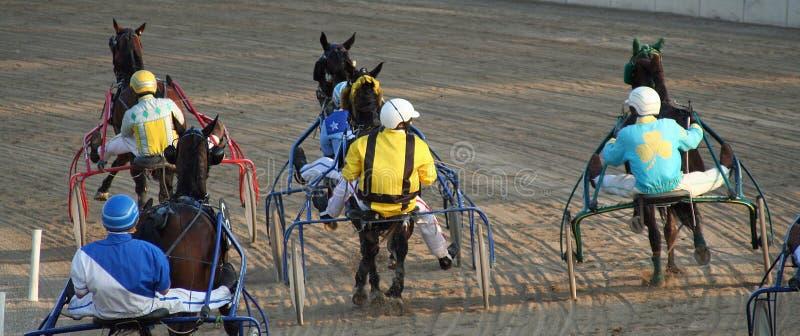 Download ιππόδρομος στοκ εικόνα. εικόνα από σέλα, αγρόκτημα, αναπηρία - 2229449